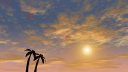 Royalty Free Video of an Airplane Taking Off Over Palm Trees With a Sunset in the Background