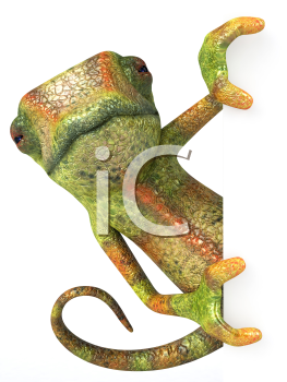 Royalty Free 3d Clipart Image of a Chameleon Holding a Sign Board