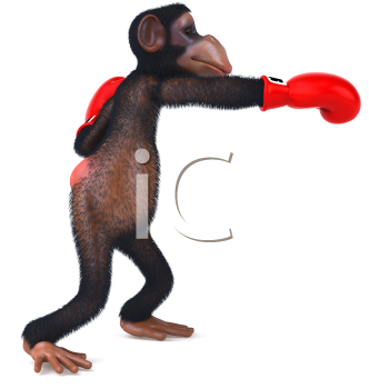 Royalty Free Clipart Image of a Boxing Chimpanzee