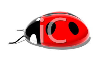 Royalty Free 3d Clipart Image of a Ladybug Computer Mouse