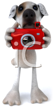 Royalty Free Clipart Image of a Jack Russell With a Camera