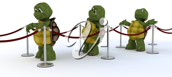 3D render of tortoises waiting in line