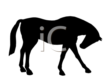 Royalty Free Clipart Image of a Black Horse