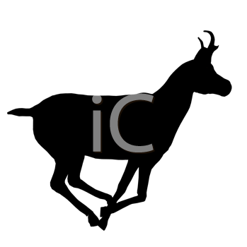 Royalty Free Clipart Image of a Deer