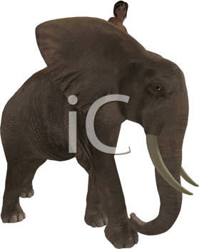 Royalty Free Clipart Image of a Boy on an Elephant