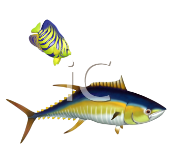 Royalty Free Clipart Image of a Tropical Fish
