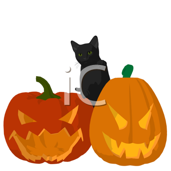 Royalty Free Clipart Image of a Black Cat on Carved Pumpkins