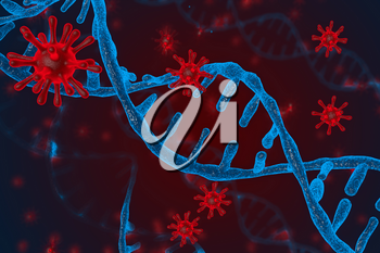 3D illustration of DNA and coronavirus disease infection COVID-2019 in microscope. Concept of virus integrates into the human cellular mechanism.