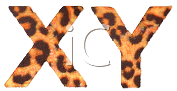 Royalty Free Clipart Image of Leopard Print X and Y
