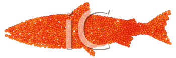 Royalty Free Clipart Image of a Caviar Shaped Salmon