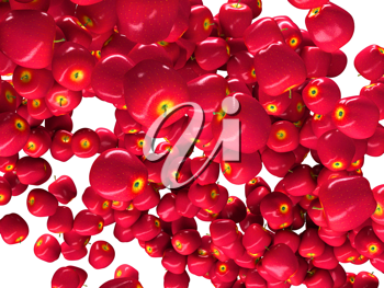 Healthy fruits: red ripe apples isolated on white