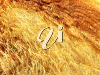 Fell: brown and yellow fox fur pattern or background. Useful for fashion