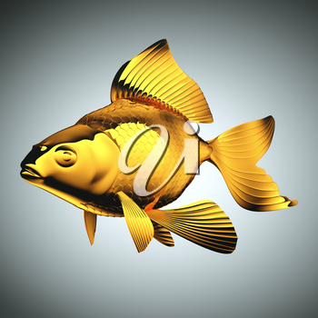 Goldfish with beautiful fins and scales over grey