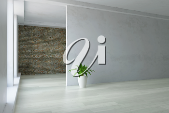 Empty Interior Room with Green Plant and Old White Plaster Wall, Simple Hall, Minimalistic Modern Room Decor, Fashion Style, 3D Rendering Illustration, Contemporary Graphic Design