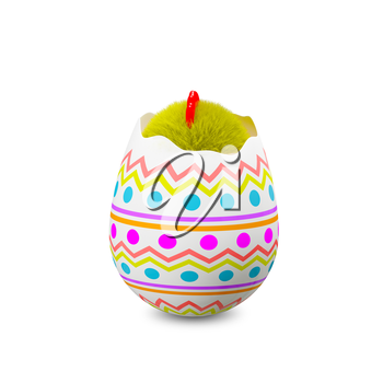 3D Illustration Chicken in an Egg on a White Background