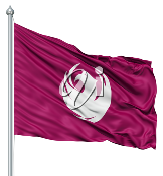 Royalty Free Clipart Image of the Phoenix City Flag