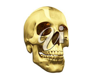 Royalty Free Clipart Image of a Skull
