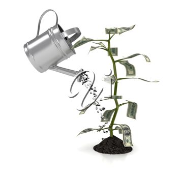 Royalty Free Clipart Image of a Money Plant