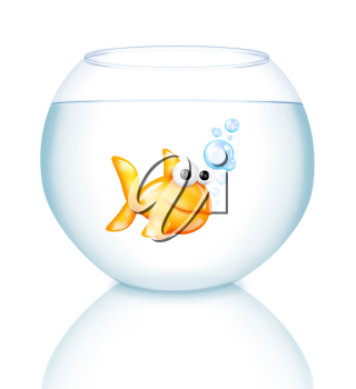 Royalty Free Clipart Image of a Goldfish in a Bowl