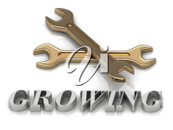 GROWING- inscription of metal letters and 2 keys on white background
