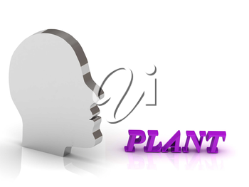 PLANT bright color letters and silver head mind on a white background