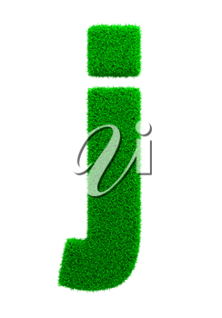 Grass Letter J Isolated on White Background.