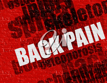 Modern healthcare concept: Back Pain - on the Brickwall with Word Cloud Around . Red Brickwall with Back Pain on the it .
