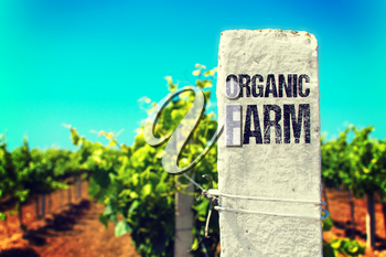 Eco Concept. Organic Farm - The Drawed Inscription on the White Fence.