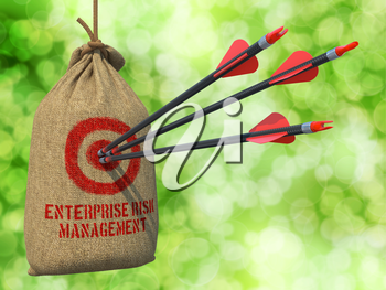 Enterprise Risk Management  - Three Arrows Hit in Red Target on a Hanging Sack on Natural Bokeh Background.