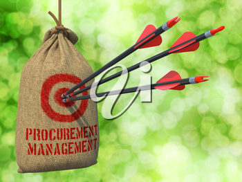 Procurement - Management - Three Arrows Hit in Red Target on a Hanging Sack on Green Bokeh Background.