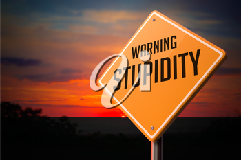 Stupidity on Warning Road Sign on Sunset Sky Background.