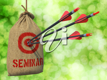 Seminar - Three Arrows Hit in Red Target on a Hanging Sack on Natural Bokeh Background.