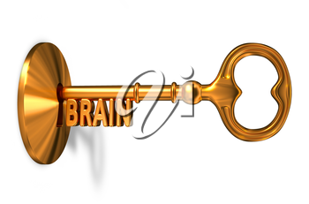 Brain - Golden Key is Inserted into the Keyhole Isolated on White Background