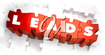Leads - Text on Red Puzzles with White Background. 3D Render.