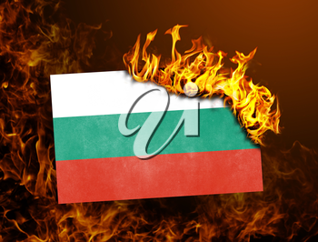 Flag burning - concept of war or crisis - Bulgaria