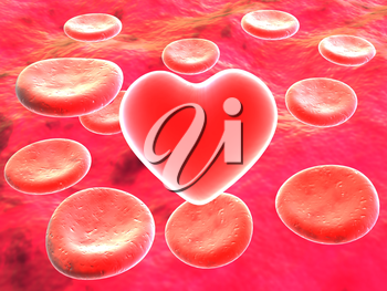 Heart in red blood cells