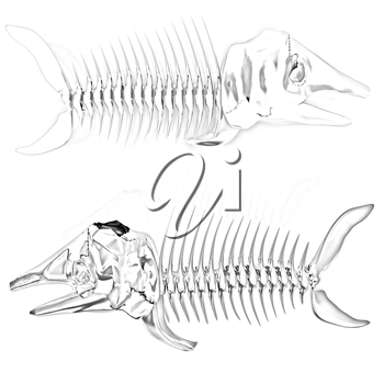 3d metall illustration of fish skeleton on a white background