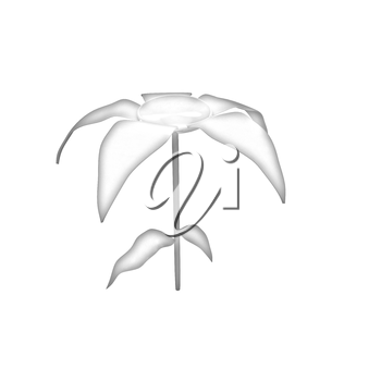Flower icon on a white background