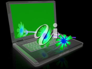 cosmos flower on laptop on a black background