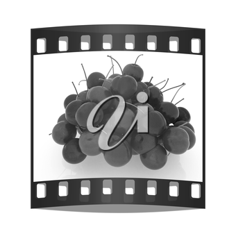 Sweet cherry on a white background. The film strip