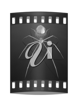 Chrome spider on a white background. The film strip
