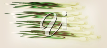 Green onion on a white background. 3D illustration. Vintage style.