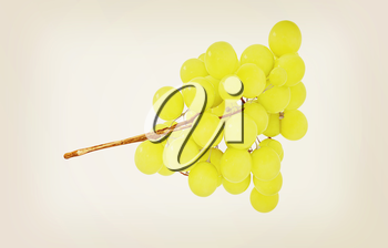 Grapes isolated on white background. 3D illustration. Vintage style.