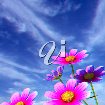 Beautiful Cosmos Flower against the sky. 3D illustration.. Anaglyph. View with red/cyan glasses to see in 3D.