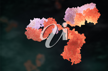Human antibody (immunoglobulin). 3D illustration