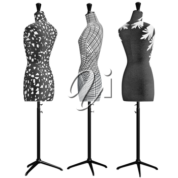 Female mannequins the front with patterned some of the elements. 3D graphic object on white background isolated