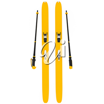 Skiing orange ski poles, top view. 3D graphic isolated object on white background