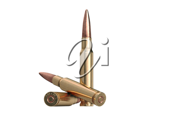 Bullet rifle caliber for hunting and protection. 3D graphic